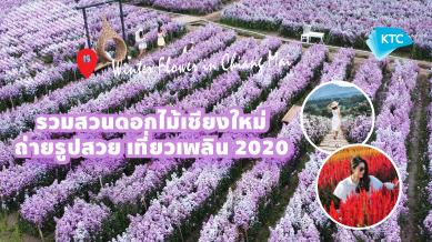 รวม 7 สวนดอกไม้เชียงใหม่ ถ่ายรูปสวย เที่ยวเพลิน 2020